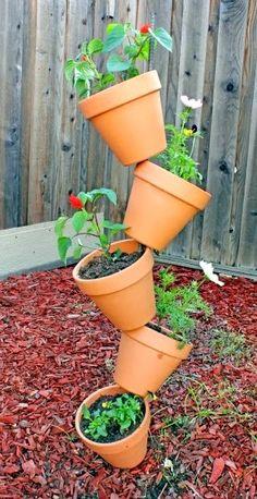 Cool planting