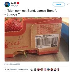 """""""straw"""" is equivalent to """"James"""", & berry is equivalent to """"Bond"""", so """"berry, strawberry"""" is being compared to """"Bond, James Bond"""" - Daily LOL Pics James Bond, Funny Picture Jokes, Funny Jokes, Funny Stuff, Funny Gaming Memes, Funny Shit, Random Stuff, Funny Images, Funny Pictures"""