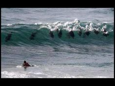 When the friendly dolphins come out to play - Jeffreys Bay, Eastern Cape.