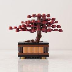 Bonsai Tree: Red Maple - Thumbnail 2
