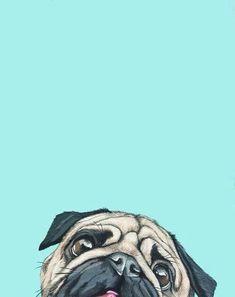 Imagen de wallpaper, dog, and pug