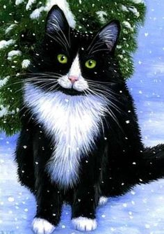 Tuxedo cat winter snow limited edition aceo print by Bridget Voth - I need to do one of Justin, Fire Survivor Pretty Cats, Beautiful Cats, I Love Cats, Crazy Cats, Cat Embroidery, Winter Cat, Winter Snow, White Cats, Black Cats