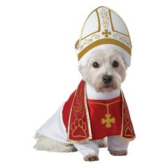 Pope dog costume. Bless