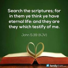 """✟♥ ✞ ♥✟ """"You study the Scriptures carefully. You study them because you think they will give you eternal life. The Scriptures you study give witness about Me. {John New International Reader'sVersion - NIRV}✟♥✞♥✟ King James Bible Verses, Bible Verses Quotes, Bible Scriptures, Love The Lord, God Loves Me, Christian Inspiration, True Words, Word Of God, Thy Word"""