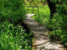 Garden Bridge, Hungary, Budapest, Sidewalk, Outdoor Structures, Side Walkway, Walkway, Walkways, Pavement