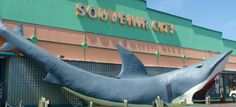 Souvenir City is one of my favorite places to visit in Orange Beach, AL.You enter the shop through the Shark's Mouth. YIKES!!!