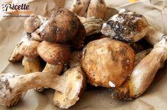 Mushrooms Pasta