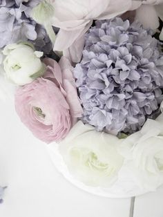 Love the lilac and soft purple shades My Flower, Beautiful Flowers, Real Flowers, Hortensia Hydrangea, Hydrangeas, Soft Purple, Pale Pink, No Rain, Soft Summer