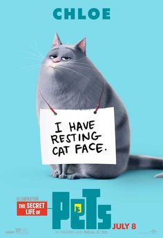 The Secret Life of Pets (2016) 27x40 Movie Poster