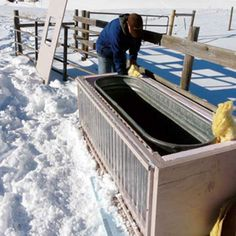 Our Facebook fans gave us feedback on how to keep livestock water from freezing when the weather gets cold. Read their innovative tips to keep your own water warm.