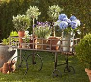 The cart full of pretty flowers!