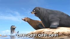 gerald finding dory - Google Search