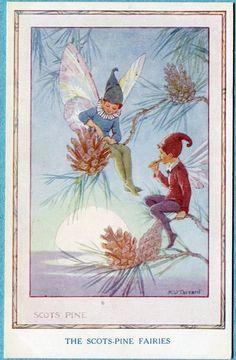 X5156 Margaret Tarrant Postcard The Scots Pine Fairies Unused Medici Brown | eBay