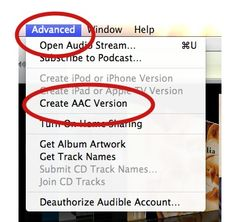 iPhone Tip: Making ringtones from your music files in iTunes