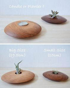 Wood Planter Box, Wood Vase, Wooden Planters, Wood Bowls, Wall Planters, Vertical Planter, Wood Projects That Sell, Small Woodworking Projects, Small Wood Projects