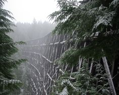 Old train trestle in the snow and fog