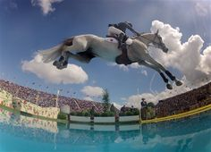 If horses could fly... equestrian jumping at London 2012 Olympics | Penelope Leprevost of France rides 'Mylord Carthago' during the equestrian jumping competition in Greenwich Park at the London Olympics on Aug. 6. (Photo: Jim Hollander / EPA) #NBCOlympics