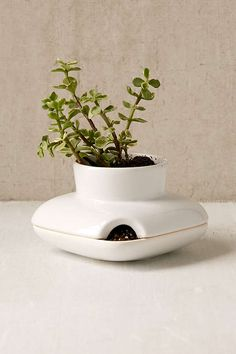 Herb Planter. Herb PlantersCeramic ...