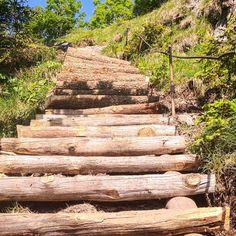 Die Stufen auf den Nockstein wurden kürzlich erneuert.  #nockstein Austria, Instagram, Nature, Pictures