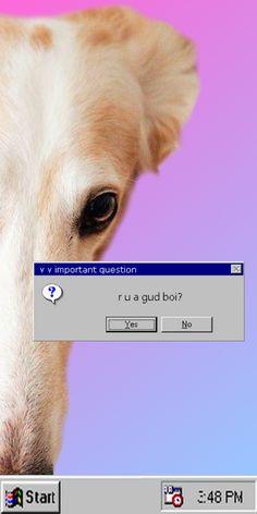 L O N G B O Y E uses Windows 95