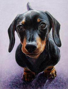 Laura Quinn - Wildlife Art, Portraits and Pet Portraits