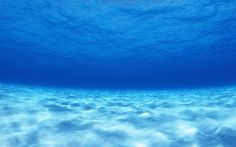 Find the best Under Ocean Wallpaper on GetWallpapers. We have background pictures for you! Blue Water Wallpaper, Underwater Wallpaper, Underwater Background, Underwater Pictures, Ocean Wallpaper, Widescreen Wallpaper, Of Wallpaper, Nature Wallpaper, Ocean Underwater