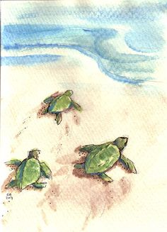 sweetest little baby turtle drawing  #CindyAndersonArtist on Etsy