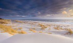 Playa de la reserva natural de Backåkra Suecia. Playas de harina así llamo a las playas de arena blanca.  Fot.: Jacek Oleksinski #playa beach #paisaje #seascape #suecia #sweden #arena #sand #blanca #white #backakra