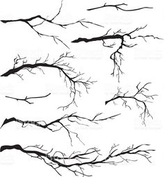 An Assortment of Bare Tree Isolated Branches Silhouettes royalty-free stock vector art
