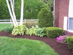 Portrait of Learn the Good Ideas to Apply Best Mulch for Landscaping