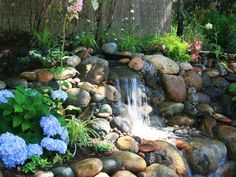 A river rock water feature is surrounded by pockets of plantings, including stunning Hydrangea, in this cottage-style backyard.