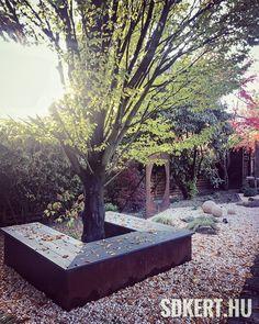 """71 kedvelés, 1 hozzászólás – SD KERT - Spiegel Ákos (@topgarden) Instagram-hozzászólása: """"#gardening #kertipad #kertipihenő #kerttervezés #kerttervező #kertépítés #corten #nemesacél…"""" Plants, Instagram, Plant, Planets"""