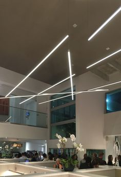To break away from the monotony of standard office lighting, these linear suspensions by Edge Lighting create a charming array of light   Lighting inspiration for corporate and home offices   Cirrus D1 Suspension - by Edge Lighting