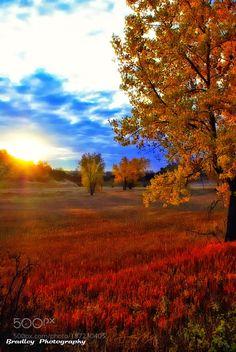 Look Back by chrisbradley11 #Landscapes #Landscapephotography #Nature #Travel #photography #pictureoftheday #photooftheday #photooftheweek #trending #trendingnow #picoftheday #picoftheweek