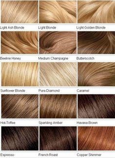 Blonde Hair Shades, Dyed Blonde Hair, Brown Blonde Hair, Blonde Honey, Hair Dye, Ash Hair, Honey Hair, Blonde Hair Palette, Golden Blonde Hair