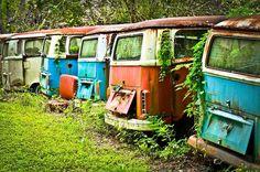 VW grave yard