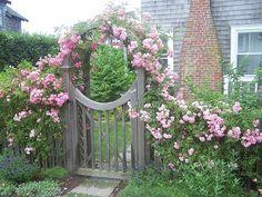 The door to the garden