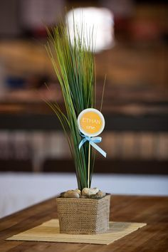 """Safari """"Wild One"""" first birthday party...simple yet classy centerpieces"""
