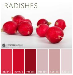 Looking for bright reds color palette for your design? Here is a color combination inspired by red radishes perfect for interior and website designs. Red Colour Palette, Red Color, Color Palettes, Yellow Master Bedroom, Neon Painting, Living Room Color Schemes, Decoration, Color Inspiration, Color Combinations