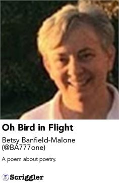 Oh Bird in Flight by Betsy Banfield-Malone (@BA777one) https://scriggler.com/detailPost/story/56017 A poem about poetry.
