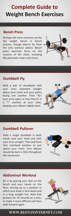 Complete Guide to Weight Bench Exercises…