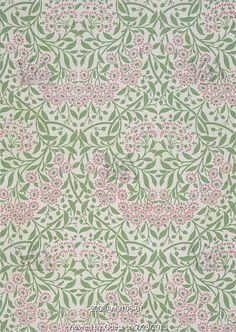 Michaelmas Daisy wallpaper, by William Morris. England, late 19th century