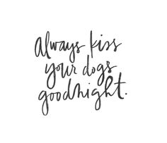 Dog And Puppies Quotes .Dog And Puppies Quotes I Love Dogs, Puppy Love, Cute Dogs, Happy Puppy, Animal Quotes, Dog Quotes, Dog Lady, Dog Accessories, My Animal
