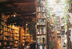 greenhouse library http://www.nomad-chic.com/shop/view-by-destination/nomad-books-for-inspired-armchair-travel.html