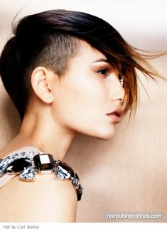Google Image Result for http://pics.haircutshairstyles.com/img/photos/full/2011-05/edgy_punk_undercut_hair_style826.jpg