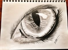 Eagle Eye Drawing, art, sketches Instagram: @just_in_artist