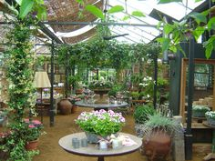 'Inside at Petersham' - I want a conservatory like this!