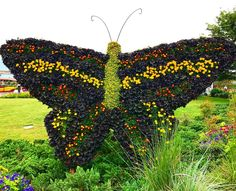 your wings already exists, all you have to do is fly... 🦋. | #caterpillarcare, #caterpillars, #butterflies, #fly, #wings, #epcotflowerandgardenfestival2017, #epcot, #disneyworld, #garden, #hedges, #nature, #beauty.