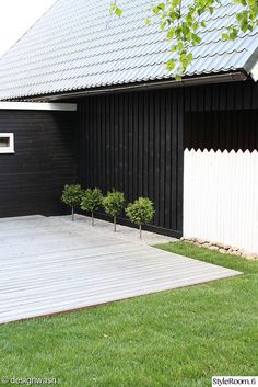 backyard, wood patio, austere landscaping