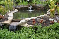 Small Backyard Ponds | Garden ponds & water features, 5 reasons to have one in your garden ...